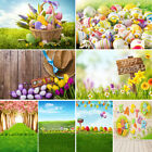 Kyпить Easter Photography Backdrop Wooden Floor Spring Flowers Photo Background Studio на еВаy.соm