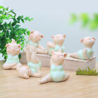 LazyisHouse® Home Decoration Creative Cute Yoga Pig Desktop Decorations Bedroom