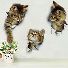 Hole View 3d Cat Wall Sticker Bathroom Toilet Living Room Home Decor Poster