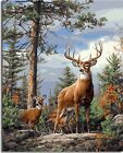 """16X20"""" DIY Paint By Number Kit Acrylic Painting On Linen Canvas Deers Animal"""