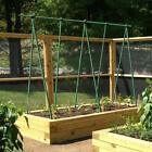 Ecostake Garden Waterproof Sticks Fence Post Stakes for Climbing Plant Support
