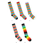 Womens Cotton Colorful Casual Knee Socks By Kikiya Socks / Made in Korea