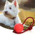 Rope Handle Pet Puppy Toys Pet Puppy Chew Toys Solid Rubber Ball Dog Chew Toy