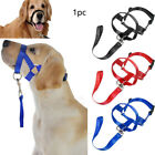 Training Gentle Dog Halter Head Collar Nylon Anti Bite Traction Rope Adjustable