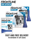 FRONTLINE Spot On Dog Flea Tick Lice - Medium Dog 10-20kg-1,2,3,6 pipettes
