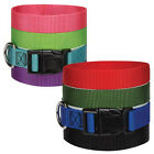 Nylon Dog Collars Adjustable Snap Buckle 8 Colors Available Choose Size & Color