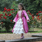 Girls Tudor Lady Princess/Queen Fancy Dress Costume