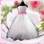 Pinks Whites Christmas Party Fancy Flower Girls Dresses SIZE 1-2-3-4-5-6-7-8-10Y
