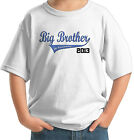 BIG BROTHER IN TRAINING 2012 2013 2014 SWOOSH T-SHIRT SHIRT