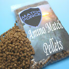 MATCH FORCE AMINO MATCH CARP PELLETS FEED ALL SIZES AND QUANTITIES HIGH ENERGY
