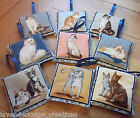 Lavender Filled Sachets Bags Aromatic Lavender Sleep Pillow Cat Designs Gifts