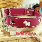 Luxury and Cute Dog Collar- Hamish Pink Genuine Leather White Dog Leash