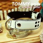 Luxury and Cute Dog Collar- Tommy White Genuine Leather White&Black Leash