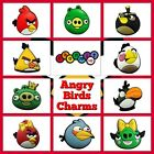2 x Angry Birds & Green Pigs Clog Shoe Charms Jibbitz Accessories Cake Toppers