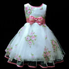 Pink Christmas Wedding Party Bridesmaid Flower Girls Dresses Age 2,4,5,6,7,8,9 Y