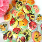 5/8* 15mm Mixed Fruit Pattern Wood Buttons Fit Sewing Buttons Craft Scrapbooking