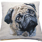 "Pug Dog Cushion Cover Puppy Dog Tapestry Luxury Quality 18 x 18"" 45 x 45cm"