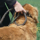 Extra Large Dog Genuine Leather Durable Leash Lead Heavy Duty 80-120CM Pitbull