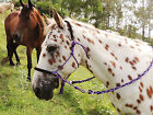 Earth-horse Equipment Bitless bridle adjustable side-pull style,choose your colo