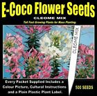 CLEOME SEEDS, PACKETS OF SEEDS, 500 SEEDS IN EACH PACKET