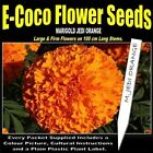 MARIGOLD JEDI ORANGE SEEDS, 25 SEEDS IN EACH PACKET, TALL VARIETY FOR VASES