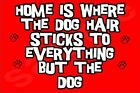 Home Is Where The Dog Hair Sticks To Everything But The Dog - (A-L) Magnet Gift