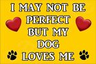 I May Not Be Perfect But My Dog Loves Me Puppy (A-J) -Jumbo Magnet Gift/Present