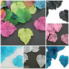 25 FROSTED LUCITE ACRYLIC LEAF BEAD CHARMS 25mm Jewellery Making Beading Crafts