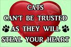 Cats Can't Be Trusted As They Will Steal Your Heart Fridge Magnet Gift / Present