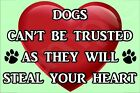 Dogs Can't Be Trusted They Will Steal Your Heart (A-J)Fridge Magnet Gift/Present