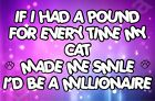 If Had A Pound Smile Millionaire Cat - Jumbo Fridge Magnet Gift / Present Kitten