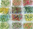 30 X SUGAR ROSE BUDS WEDDING OR CELEBRATION CAKE TOPPER DECORATION DECORATING