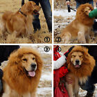 New Lion Mane Wig For Pet Dog Halloween Costume Festival Fancy Dress