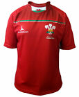 Olorun 6 Six Nations Wales Sublimated Rugby Shirt S-7XL