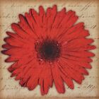 "TS1001 Big Red Flower Tony Smart 6""x6"" framed or unframed print art"