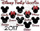Disney Family Vacation 2017 Personalized Iron On T Shirt Fabric Transfer #X09