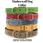 NEW ANCOL TIMBERWOLF LEATHER DOG COLLAR (SABLE) with FREE ENGRAVED ID TAG
