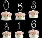 Silver Metallic Birthday Anniversary Cake Topper Numbers Symbol Pick And Shiny