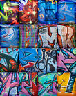 Hip Hop Graffiti Background Backdrop Hi Res Digital Download 50 Image Photograph