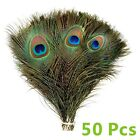 50pcs Peacock Feathers Tail Natural 10-12inch Long For Bouquet DIY Decoration