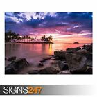 BEACH RESORT SUNSET (3820) Animal Photo Picture Poster Print Art A0 A1 A2 A3 A4