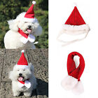 NE 2Pcs Pet Dog Cat Xmas Santa Hat & Collar With Bell Christmas Costume Apparel