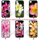 Phone Hard Case Cover Colourful Frangipani Pretty Flower Collection 16b