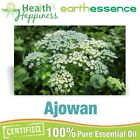 earthessence AJOWAN ~ CERTIFIED 100% PURE ESSENTIAL OIL ~ Aromatherapy Grade
