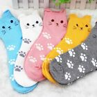 Candy Cat Summer South Footprints Cute Autumn Cotton Socks Cartoon
