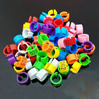 New 100 Pcs 10mm 1-100 Numbered Poultry Leg Bands Bird Pigeon Duck Rings Clip