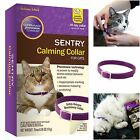 Sentry Calming Collar For Cats Travel Shock Behavior All Age No Side Effect