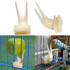4PCS Device Pet Supplies Feeding Tool Bird Set On Cage Feeder Parrot Fruit Forks