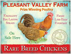 PLEASANT VALLEY FARM POULTRY CHICKENS HENS EGGS SIGN METAL PLAQUE TIN SIGN 47