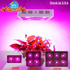 Integrated LED Grow Light 600/1200/1800W  Full Spectrum Improve Plant Hydroponic